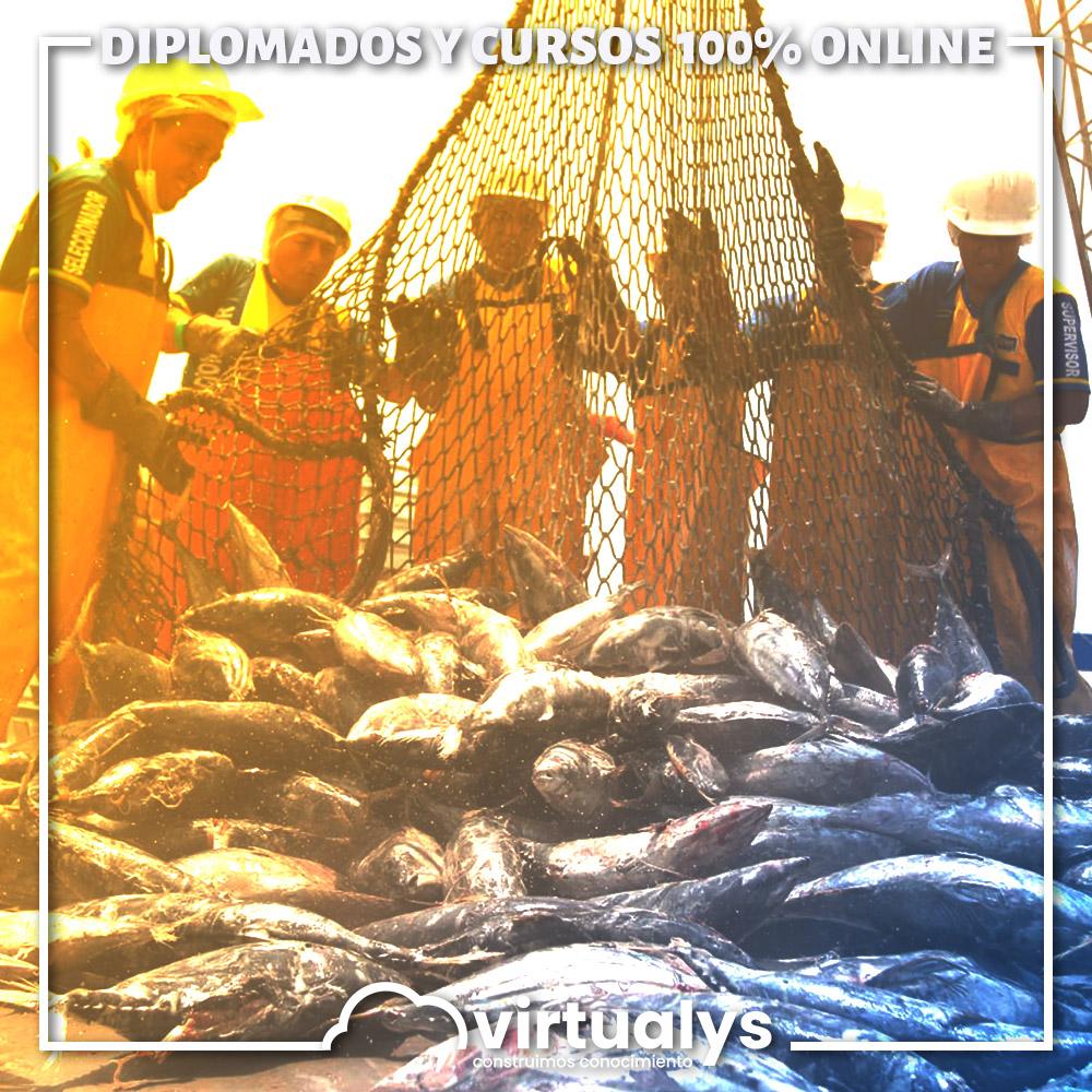 Aplicación de prerequisitos para la Industria Pesquera