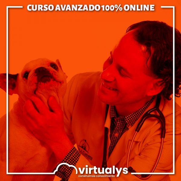 virtualys-curso-avanzado-diagnostico-y-terapeutica-para-la-practica-clinica