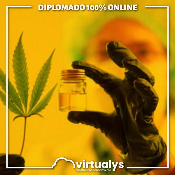 virtualys-diplomado-cannabis-medicinal