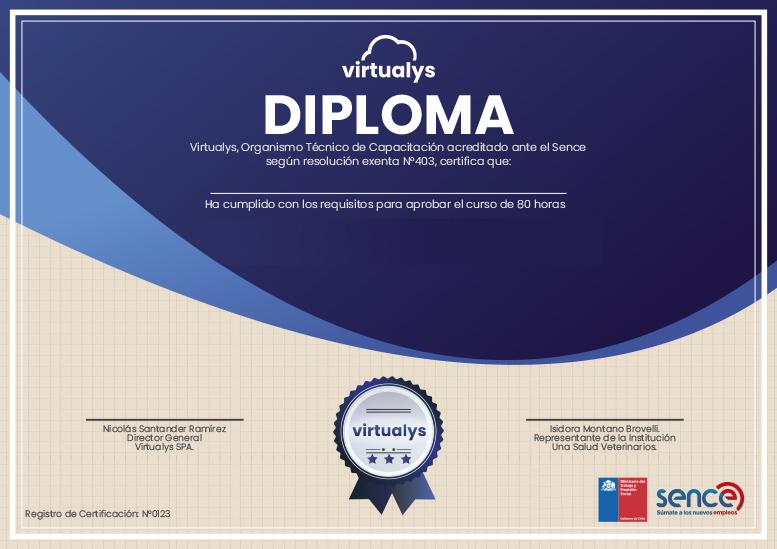 diploma-virtualys