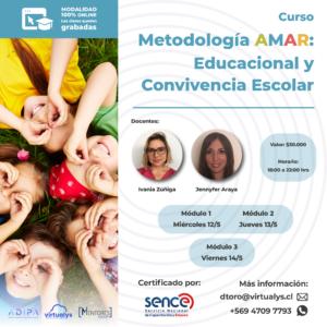 Curso Convivencia Escolar y AMAR-E & Curso de Actualización Terapéuticas en Temáticas de Violencia de Pareja