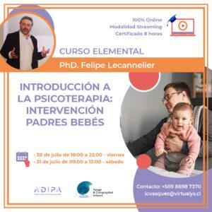 Curso: Introducción a la Psicoterapia: Intervención Padres – Bebés