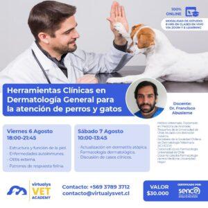 Curso de Herramientas Clínicas en Dermatología General