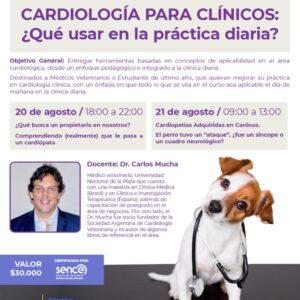 Curso de Cardiología para Clínicos